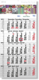 Quintus 5-Monats-Planer Einblockkalender