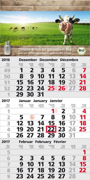 Einblatt-Monatskalender/Planer Orbit 3