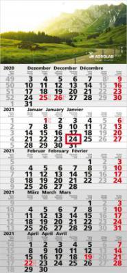Quintus  5-Monatsplaner/Kalender