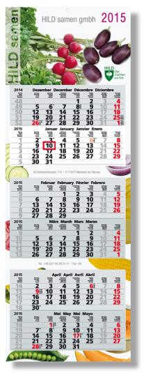 6-Monatskalender Synergie